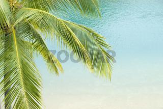 tropical sea resort