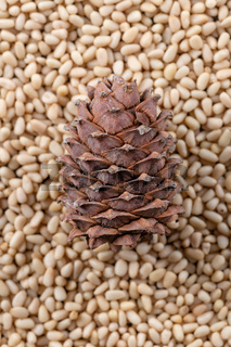 Cone on the background of peeled pine nuts closeup.