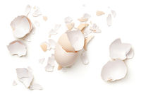 Egg Shells Isolated On White Background