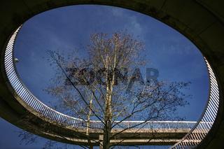 Der Baum in der Bruecke