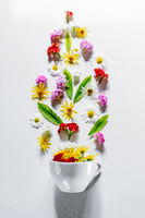 White Cup with flower tea ingredients on a white background. Concept summer, nature, healthy food, natural and healthy products. Flat lay. Free space