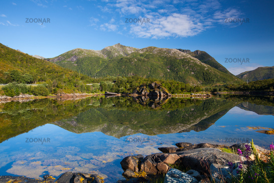 In the small port on Lofoten Islands, Norway