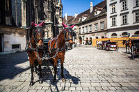 horses and carriage on historic europe centre square