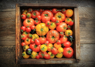 Wooden box filled with fresh vine ripened heirloom tomatoes from farmers market