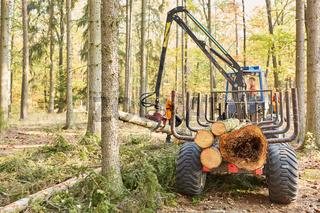 Forstkran hebt Baumstamm auf Langholzwagen