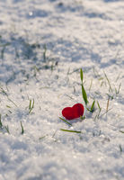 Red heart shape stuck in fluffy snow