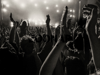 Cheering fans at a concert