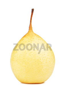 Fresh Chinese Pear