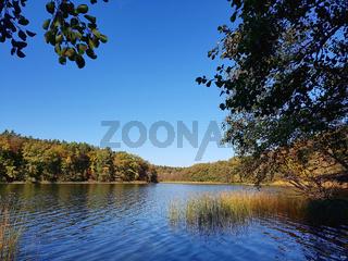 Seenlandschaft im Land Brandenburg im Herbst