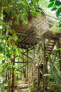 Öko-Tourismus auf Borneo in Stelzenbungalows, die naturschonend in bestehenden Regenwald integriert wurden
