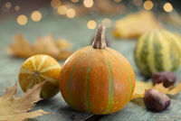 Autumn mood - pumpkins on turquoise wood with lights
