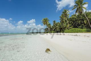 Traumstrand der Karibik, Dream beach of the Caribbean
