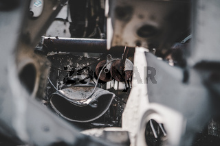 Iceland Lonely DC-3 Plane Wreckage Aviation Detail
