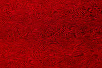 Abstract wavy red pattern