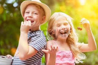 Zwei Geschwister essen Kirschen im Sommer