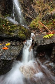 Der Schwarzwald - Wasserfall