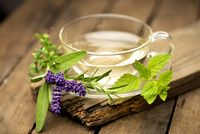 Hot cup of herbal tea with fresh herbs