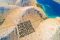 Aerial view of Kornat island drywalls and stone desert