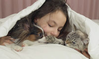 Happy teen girl communicates with dog Papillon and Thai cat in bed