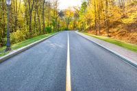 Road and autumn landscape