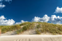 dunes with marram gras