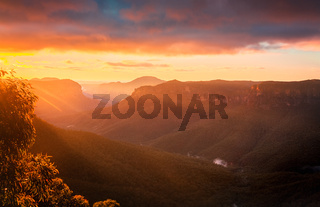 Sun rays into Grose Valley Blue Mountains just after sunrise