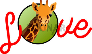 Love handwritten lettering valentine concept with illustration of the giraffe, isolated on white background.