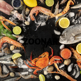 Fish and seafood variety, a square flatlay top shot, a frame with copy space on a dark background. Sea bream, shrimps and prawns, crab, sardines, squid, mussels and other fresh products on ice