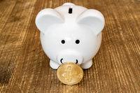 Saving Bitcoins Concept