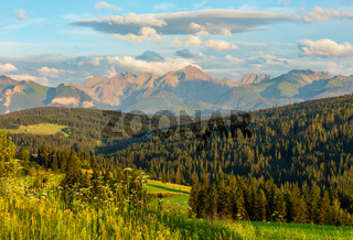 Summer mountain evening country view