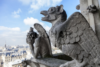 Chimeras on Notre Dame de Paris