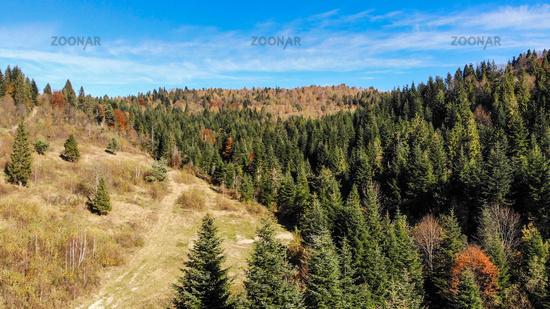Aerial view of Carpathian Mountains, autumn landscape