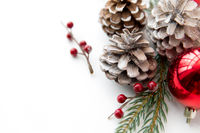 christmas balls and fir branches with pine cones