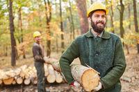 Waldarbeiter oder Holzfäller bei der Holzernte