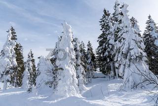 tiefster Winter im Skigebiet Hochficht - sonniger Wintertag
