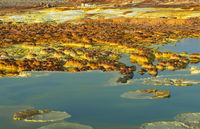 Colorful hot springs, salt pools and deposits colored by sulphur, dissolved iron and halophile algae
