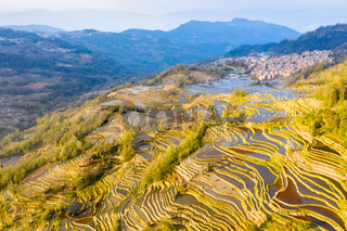beautiful terraced field landscape at dusk