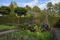 Herbstlicher Nutzgarten