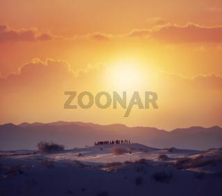 Tourists Watching A Desert Sunset.