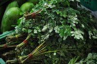 Coreander leafes