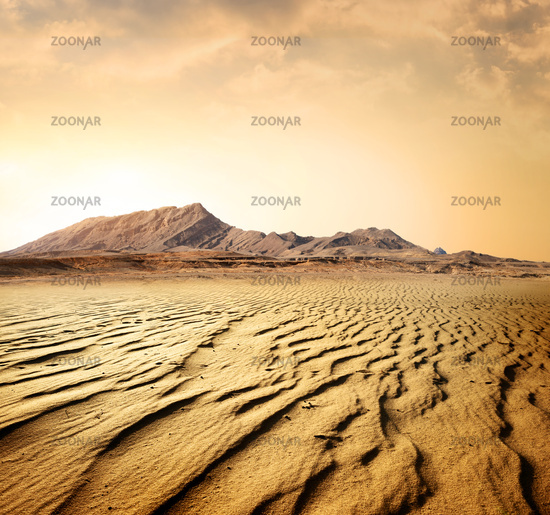 Egyptian rocky desert