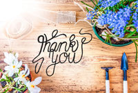 Sunny Spring Flowers, Calligraphy Thank You, Wooden Background