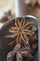 Chinese star anise and scoop