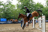 show jumper, horse show wiesbaden 19