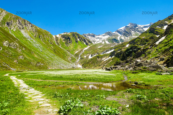 Picturesque high alp with protected high moor, Prettau in the Ahrntal valley, South Tyrol, Italy