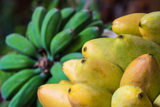 Früchte auf einem Markt in Funchal auf der Insel Madeira, Portugal