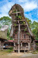Tongkonan houses, traditional Torajan buildings, Tana Toraja, Sulawesi, Indonesia