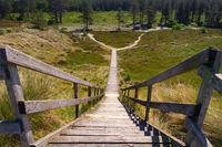 Wooden stairs Süddorfer observation dune