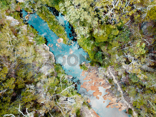 High above the trees looking down on fresh water rock pools
