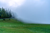 Dense fog suddenly ascendig from the valley on a mountain meadow